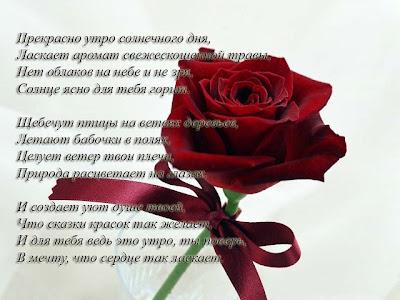 Красивые романтические стихи любимой